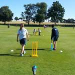 Kwik Cricket success for Years 3 and 4